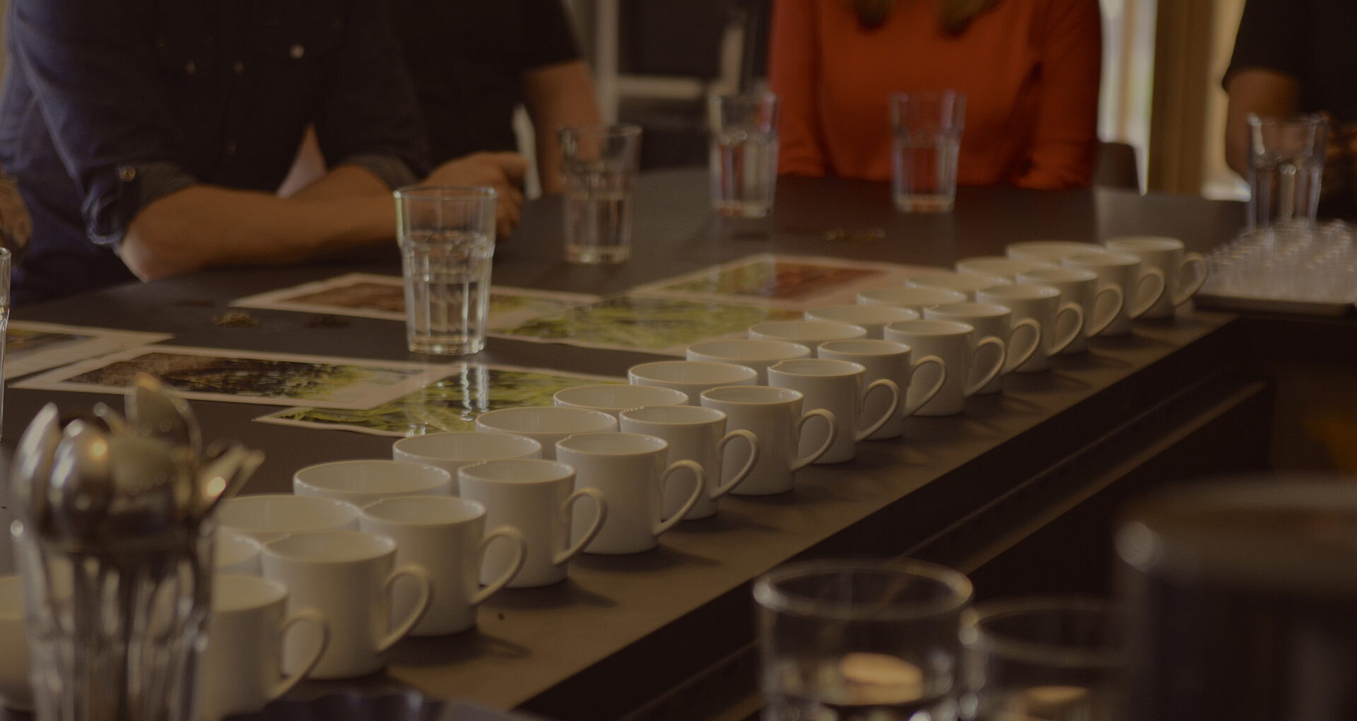 Tea Tasting Masterclasses